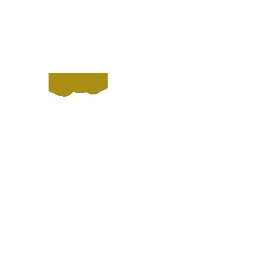 Partner-Logos-Square_0001_gold-ms-partner-reverse-50